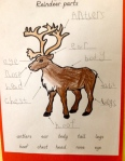 Independent learning reindeer