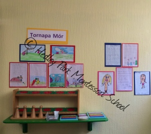 Senior Class: Gaeilge Display